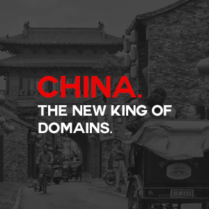 China Domain Name King