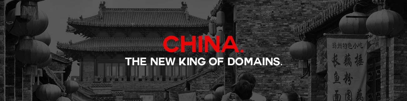 China Domain Name King