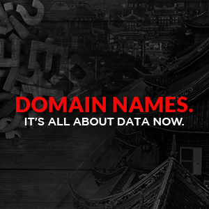 China Domain Name Market